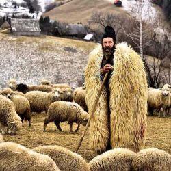 """میان چوپانان صدای """"هِر"""" برای طلبیدن گوسفندان و """"بِر"""" برای جلو راندنشان استفاده میشد،  و اگر چوپانی آنرا نمیدانست یعنی از اصول پرت بود! به همین دلیل میگفتند هِر را از بِر تشخیص نمیدهد.."""
