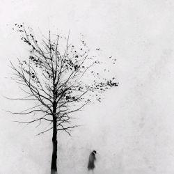 پاییزِ کوچکِ من،  گنجایشِ هزار بهار گنجایشِ هزار شکفتن دارد پاییزِ کوچکِ من دنیایِ سازشِ همه رنگهاست با یكدیگر!...  #حسین منزوی پ.ن: سلام و عرض ادب به محصرتان اهالی : ) چقدر پاییز فصل زیباییست