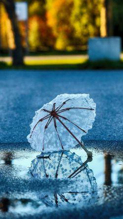 دوست داشتن نم نم باران ست ... کم کم می آید و به درازا می کشد ... بارانی دوستت دارم ...