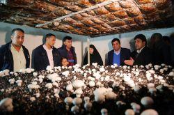 برگزاری مراسم بهرهبرداری از طرحهای اشتغالزایی اجتماعمحور بنیاد برکت در بخش اژیه