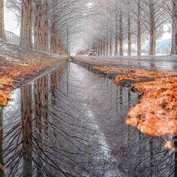 اولین روز #زمستانیتون سرشار از شادی  #صبح_بخیر