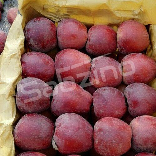 فروش سیب قرمز | https://sabzino.com/articles/red-apple-sale | خرید و فروش سیب قرمز صادراتی برای صادرات به پاکستان، روسیه و افغانستان