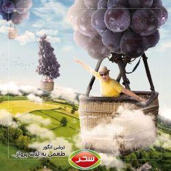 طعمی به لذت پرواز #ترشی_انگور #پادشاه #قدرت #طعم #بی_نظیر #محصولجدید #غذاى_سالم #بدون_نگهدارنده #مزه #چاشنی #صنایع_غذایی_سحر