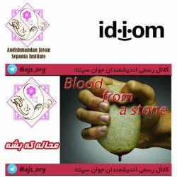 #idiom #اصطلاح #blood_from_a_stone #محاله_که_بشه #choose_wisely #اندیشمندانه_انتخاب_کنید @ajs_org