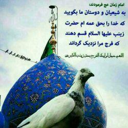 السلام علیک یا ابا صالح المهدی اللهم عجل لولیک الفرج