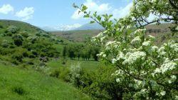 بهار زیبای شهر ایردموسی ۱۳۹۶