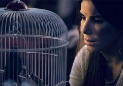فیلم سینمایی جعبه پرنده  www.filimo.com/m/hWKTn