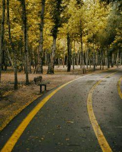 گر عشق مقصد است،  خوشا لذت مسیر...   #فاضل_نظری