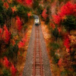 ما چه بخواهیم  چه نخواهیم قطار زندگی  به سرعت داره حرکت میکنه پس بهتره تا جایی که میتونیم  به جاهای زیبای  منظره های زندگی خیره بشیم تا غم و غصه هاشو فراموش کنیم