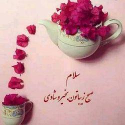 هر روز خود را با بسمالله آغاز کنید  امام علی(ع): آن که کردارش او را به کندى حرکت دهد، نسبش وى را سرعت ندهد.  سلام صبح بخیر دوستان خوبم روزتون به نیکی