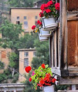 با آغاز هر صبح شادباش و بخند  دوست بدار  فراموش کن  مهربان باش  هرصبح خورشید فریاد میزند  آی آدمها، کتابِ زندگی چاپِ دوم ندارد!  پس تا میتوانید عاشقانه و  خالصانه و شاکرانه زندگی کنید  #صبح_بخیر