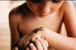 عکس امروز نشنال جئوگرافیک پسربچه ای را در حال بررسی یک مارمولک نشان میدهد. او این مارمولک را هنگام بازی پیدا و شکار کرده است. مادر این کودک، تررا فوندریست، این لحظه را به ثبت رسانده است. #عکس آنلاین
