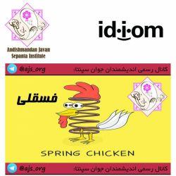 #idiom #اصطلاح #spring_chicken #فسقلی #choose_wisely #اندیشمندانه_انتخاب_کنید @ajs_org