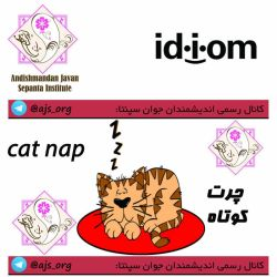 #idiom #اصطلاح #cat_nap #چرت_کوچولو #choose_wisely #اندیشمندانه_انتخاب_کنید @ajs_org