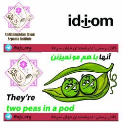 #idiom #اصطلاح #they_are_two_peas_in_a_pod #آنها_باهم_مو_نمیزنن #choose_wisely #اندیشمندانه_انتخاب_کنید @ajs_org