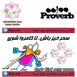 #proverb #ضرب_المثل #early_bird_gets_worms #سحرخیز_باش_تا_کامروا_شوی #choose_wisely #اندیشمندانه_انتخاب_کنید @ajs_org