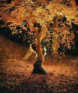جزیرهایست عشق تو که خیال را به آن دسترس نیست خوابیست ناگفتنی تعبیر ناکردنی بهراستی عشق تو چیست ؟ گل است یا خنجر ؟ یا شمع روشنگر ؟ یا توفان ویرانگر ؟ یا ارادهی شکستناپذیر خداوند ؟   تمام آنچه دانستهام همین است  تو عشق منی و آنکه عاشق است  به هیچ چیز نمیاندیشد  #نزار_قبانی