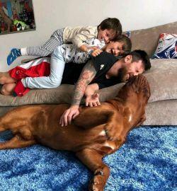 سگ مسی یروز خودشو و زن بچشو میخوره
