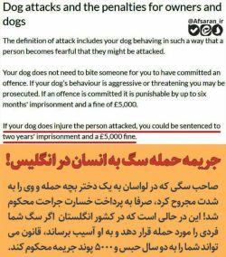 مقایسه جریمه حمله سگ به انسان در ایران و انگلیس در ایران پرداخت هزینه درمان جراحت در انگلستان پرداخت جریمه تا ۵۰۰۰ پوند و تا دوسال حبس صاحب سگ.  بیداری ملت @bidariymelat @bidariymelat