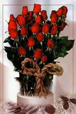 سلام دوستان گل آوردم  براتون تقدیم به همتون نفری یکی بردارید و تقدیم کنید به دوستتون#تگ آزاد