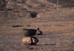 فیلم کوتاه فولادی ترین میوه بهشت  www.filimo.com/m/uadLh