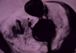 فیلم کوتاه فصل سرد  www.filimo.com/m/uQC7T