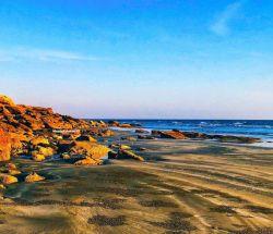 ساحل پیوشک یا ونک