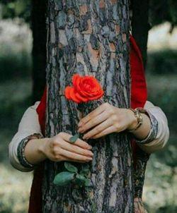 روزهای سخت می آیند و می روند تا مزهٔ قهقه های بلند از زیر دندان زندگی نرود... تا طعم نان داغ صبحانهٔ مادر بوی تکرار و رنگ دلزدگی به خودش نگیرد! روزهای سخت می آیند و می روند که از میان هزاران، همین چند رفیق ناب و چند یار اصیل برایمان بمانند... تا گاه گاهی به یادمان بیاورند که دلبری گلهای ارغوانی باغچه چیز کمی نیست  سلام صبحتون دل انگیز