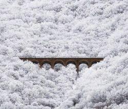 این تصویر، منظره ای بی نظیر و چشم اندازی بکر در مسیر کوه پایه های آلپ و بهشت گردشگران و توریست ها در کشور سوئیس نیست!  اینجا مازندران- سوادکوه- پل کلانتری، از جمله پل های سه خط طلاست...