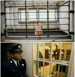 20% زندانیان زن ژاپنی پیرزنهایی هستن که دزدی میکنن تا به زندان برن و از تنهایی دربیان!  نگهبانهای زندان تبدیل به پرستارهایی شدن که معمولا مدت زیادی تو این کار دووم نمیارن!