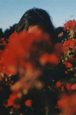 گلی گم کرده ام می جویم اورا .... پ.ن۱:یک نفر نیست مرا از تو خبر دار کند...!؟ پ.ن۲:گل گمگشته ی من عکس رو از پیج خودت برداشتم :)@rozana.