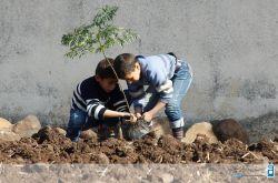 گرامیداشت هفته منابع طبیعی و روز درختکاری
