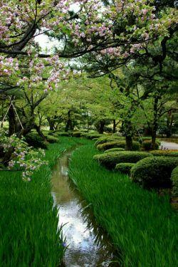 آغاز ماه رجب مبارک رجب نام نهری در بهشت است، از شیر سفیدتر و از عسل شیرین تر. هرکسی یک روز از رجب را روزه بگیرد از آن نهر خواهد نوشید.