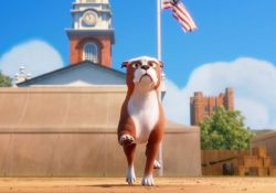 انیمیشن گروهبان استابی : یک قهرمان آمریکایی   www.filimo.com/m/TXg0A