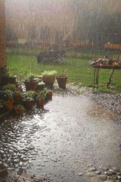 ♥♡♥    حکایت بارانِ بی امان است این گونه که من  دوستت میدارم . . .  #هوای_بارونی_فروردین98 #برای_دل_خودم 1398/1/6