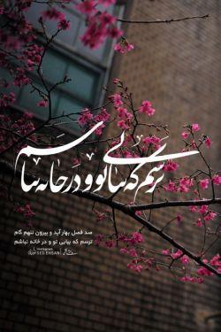 #وحشی_بافقی