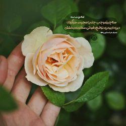 سه چیز موجب جلب محبت می گردد.. دین داری،تواضع و فروتنی،سخاوت و بخشش