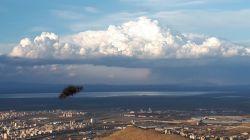 شهر اراک در کنار کویر و تالاب میقان  پروانه ای به طور اتفاقی خود را در چهار چوب لنز دوربین ما جای داده است