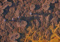 سریال مستند یک تخته سنگ عجیب  www.filimo.com/m/21704