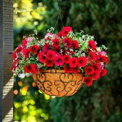 سلام کن به خورشید  سلام کن به زندگی  به برکتِ فرصتِ دوباره بودنت  به حُرمتِ چشمانَت که به زندگی باز شد  بیدار شو تا زیباییهایِ زندگی را ببینی  تو خود نقاشِ نقشِ زندگیت هستی  رنگهایت را انتخاب کن  و بومِ زندگیت را رنگ بزن  بیخیالِ آنانکه رنگِ زندگیت را نمیپسندند  زندگی تو مال توست سهم توست آنگونه رنگش کن که از درون شاد و راضی باشی  نه اینکه فقط از بیرون شاد دیده شوی...