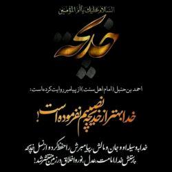 خداوند بهتر از خدیجه نصیبم نفرموده است ... پیامبر گرامی اسلام صل الله علیه و آله