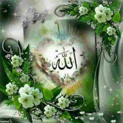 ✨در این لحظات سحر ✨ برایتان خدا را آرزودارم ✨خدا را کہ داشتہ باشید ✨انگار تمام جهان را دارید ✨طاعات و عباداتتون قبول  ✨التماس دعا