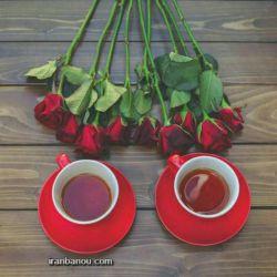 دو فنجان چایی با گل رز هدیه توسن نقره ای خیال من و توست.