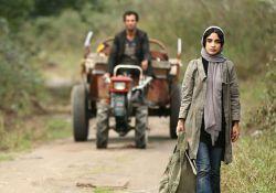 فیلم سینمایی ترانه   www.filimo.com/_/m/nq0mi