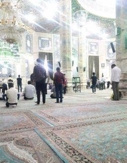اللهم انصره و انتصر به لدینک، و انصر به اولیائک و اولیائه و شیعته و انصاره و اجعلنا منهم.  هم اکنون مسجد آسمانی #جمکران، دعا گوی دوستان هستم.