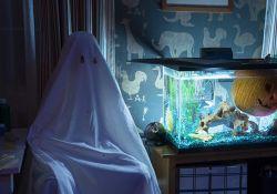 فیلم سینمایی هالووین   www.filimo.com/m/wSitq