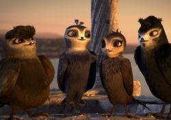 انیمیشن مانو پرنده چابک  www.filimo.com/m/dJ1M5