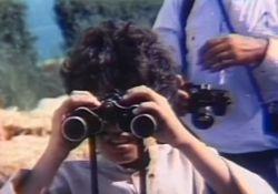 فیلم سینمایی گالان   www.filimo.com/m/2oCzI