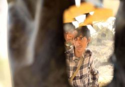فیلم سینمایی فصل بلوغ  www.filimo.com/m/wfaMZ