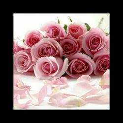 گل در ازاى گل مخاطب خاص